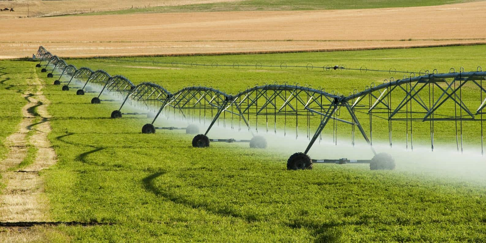 agricultural industry sealing and gaskets